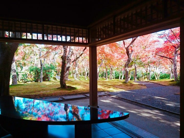 Intellectual Fun In Hakone: A Thrilling Day Trip Filled With Art
