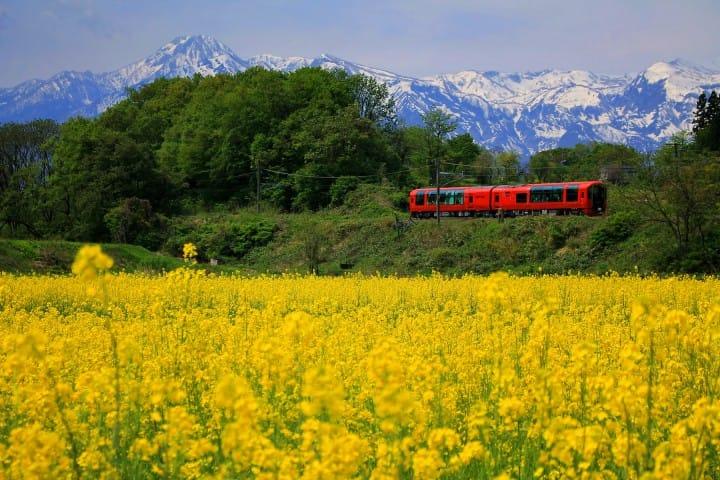 Perjalanan 3 Jam Tak Terlupakan dengan Kereta Wisata Setsugekka di Prefektur Niigata