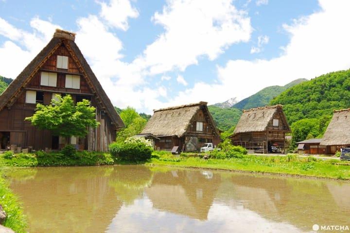 พาเที่ยวหมู่บ้านมรดกโลก ชิราคาวะโก (Shirakawago) แบบจัดเต็ม การเดินทาง จุดท่องเที่ยว อาหารอร่อย