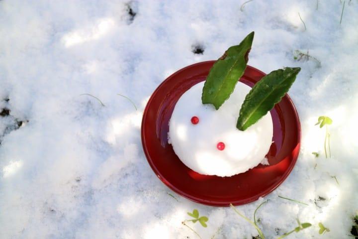 Loved By Everyone In Japan! Ice Cream Wrapped In Mochi - Yukimi Daifuku