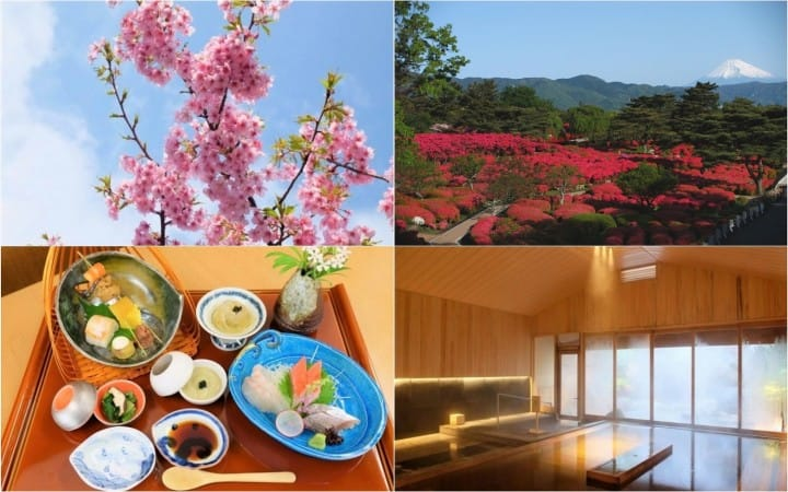 Hoshino Resorts KAI Ito - A Modern Ryokan In A Sea And Flower Paradise