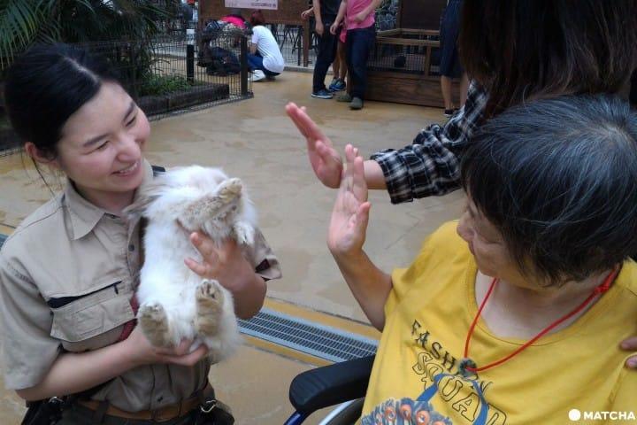 """【神户】动物自在,全家人也能尽情享受的无障碍动物园""""神户动物王国"""""""