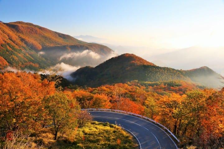 栃木完全ガイド。日光・鬼怒川・宇都宮・那須でやりたいこと10選・アクセスなど
