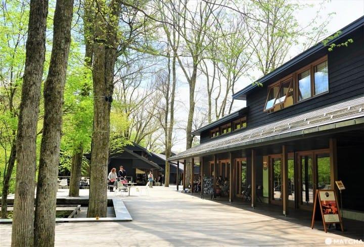 8 Tempat yang Wajib Anda Kunjungi di HARUNIRE Terrace, Karuizawa Hoshino Area