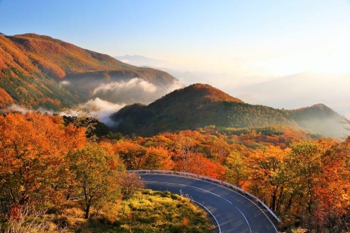 【栃木】日光・鬼怒川・宇都宮・那須 必做10件事・景點・交通資訊懶人包