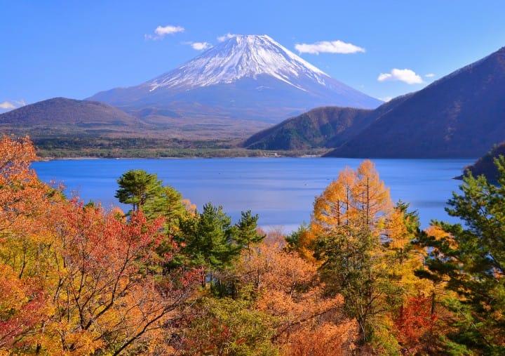 紅葉富士山