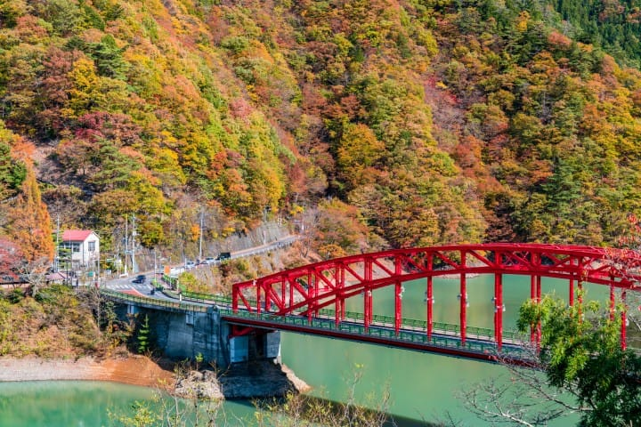 5 Spectacular Places To See Autumn Leaves Near Tokyo