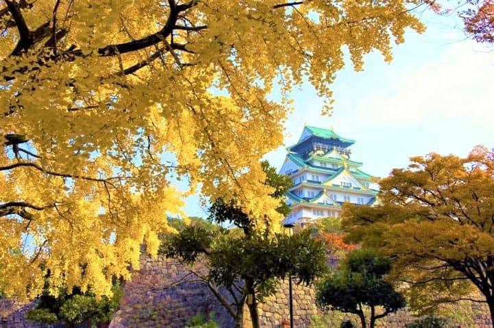 【2019年版】大阪不可錯過的賞紅葉10選〜箕面公園・大阪城・大仙公園