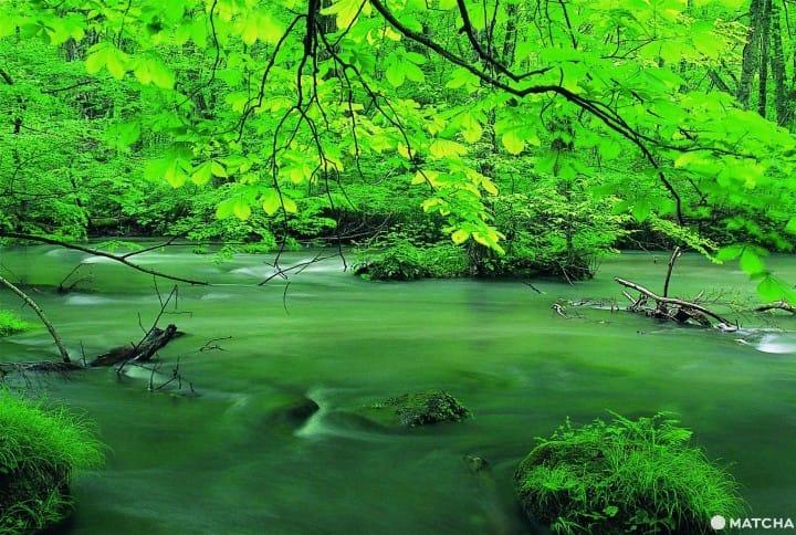 【青森旅行宝典】精选二十个观光地~美食、大自然、艺术等~