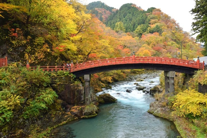 15 Top Fall Things To Do In Japan - Stunning Foliage, Festivals, And Food