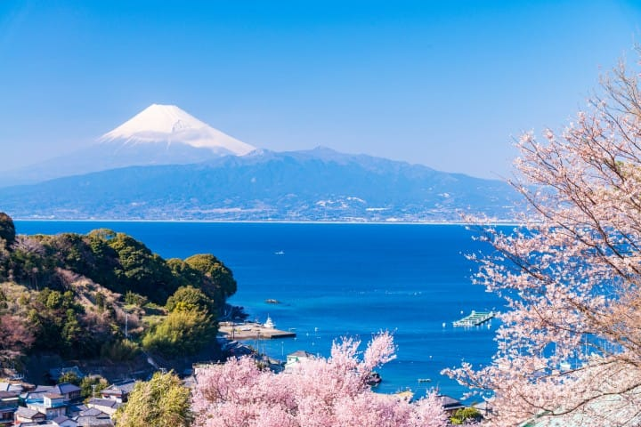【静冈】伊豆到底是什么地方?伊豆半岛、景点、温泉住宿介绍