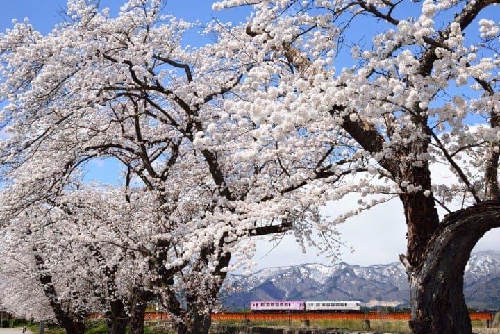【山形】阿信的故鄉!山形必去觀光景點-銀山溫泉、蔵王絕景、山寺&美食
