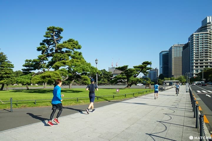 The Imperial Palace Run: Route Guide And ASICS RUN TOKYO MARUNOUCHI