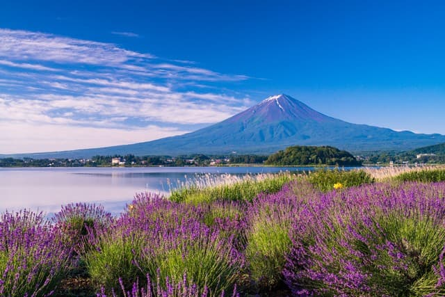 Fuji Five Lakes - Enjoy Mt. Fuji, Lake Kawaguchiko, And Lake Yamanakako!