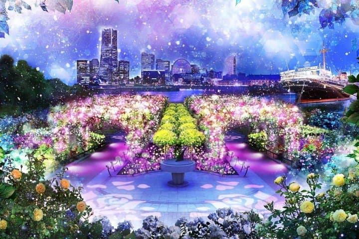 งานประดับไฟครั้งแรก! ทุ่งดอกกุหลาบและแสงที่สวนยามาชิตะในโยโกฮาม่า (Yokohama)