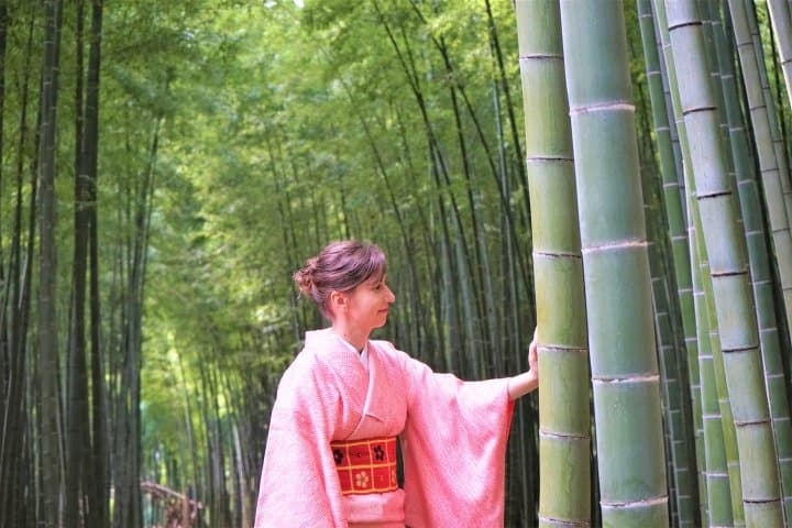 Utsunomiya Fall Trip - Bamboo Forest Walk, Fruit Picking, And Gyoza