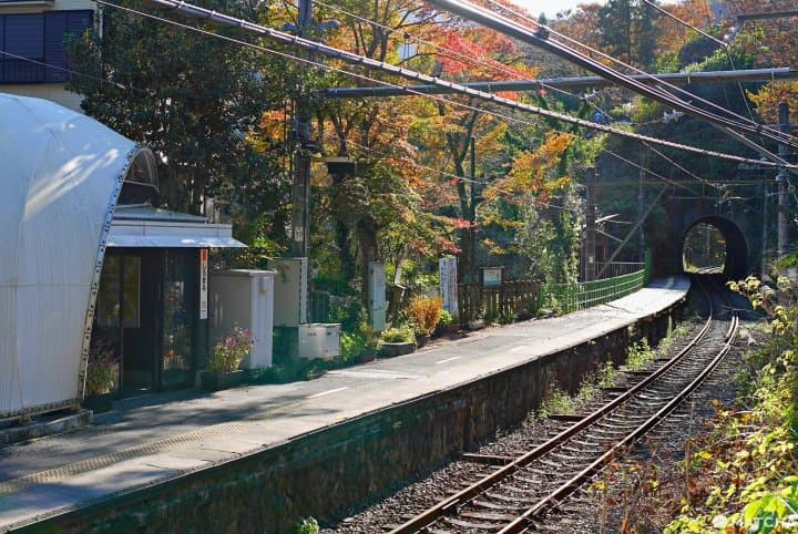 Tired Of The Crowds? Visit Tokyo's Unmanned Stations