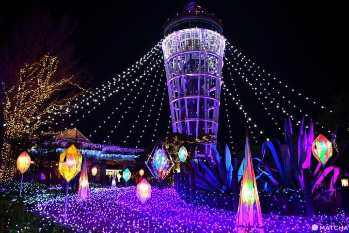 【江之電沿線】閃到情人節!冬季璀璨湘南寶石「江之島冬夜點燈」