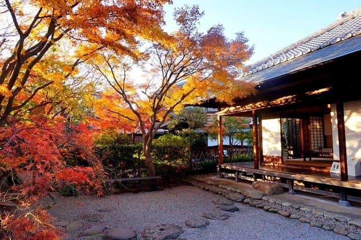 ชมใบไม้แดงในมัตสึโดะ ย่ำเมืองเก่าที่นากาเระยามะ เดินทางชิลๆ ไปเช้าเย็นกลับจากโตเกียว
