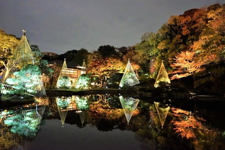 Dreamlike! Tour Tokyo's Fall Foliage Spots With The Toei One-Day Pass