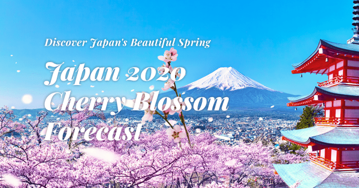 Japan 2020 Cherry Blossom Forecast Discover Japan S Beautiful Spring Matcha Japan Travel Web Magazine