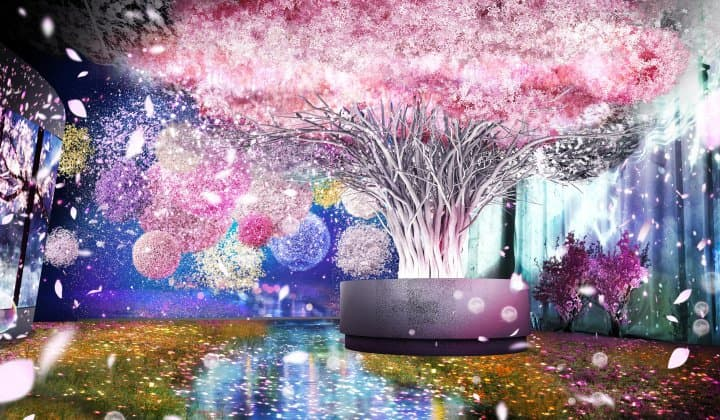 See Early Cherry Blossoms! Immersive Floral Art And Drinks In Tokyo