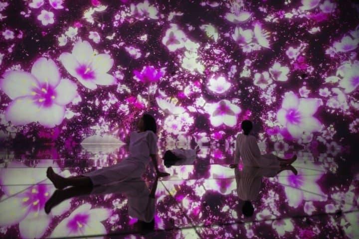 teamLab Planets TOKYO DMM