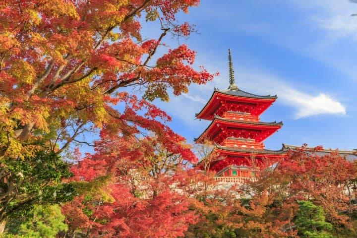 kiyomizudera kyoto in fall
