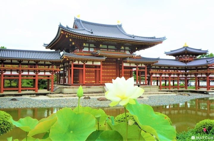 Uji Complete Guide - Travel To The Phoenix Hall In Kyoto's Town Of Tea