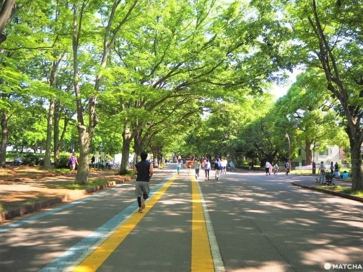 Top 5 Places To Run In Tokyo Off The Beaten Path