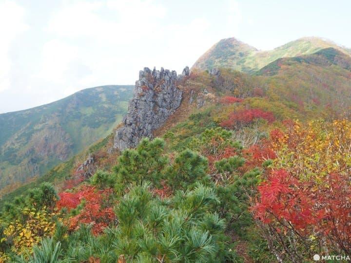 【北海道 道東】抓住紅葉之秋,藻琴山登山足湯半日遊