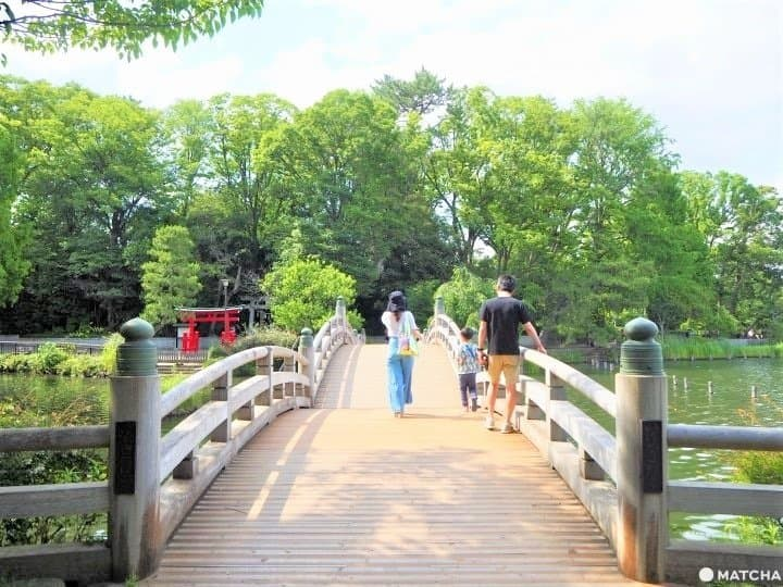 Senzokuike Park - A Hidden Gem In Tokyo With Nature And A Rich History