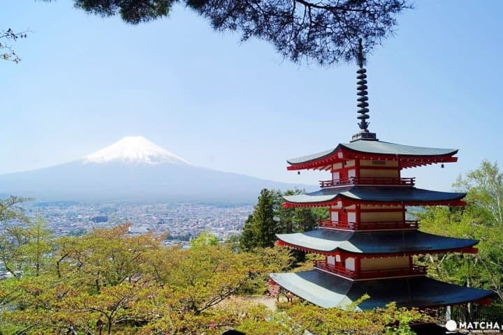 Up To 50% Off! Go To Travel Campaign For Exploring Japan On A Budget