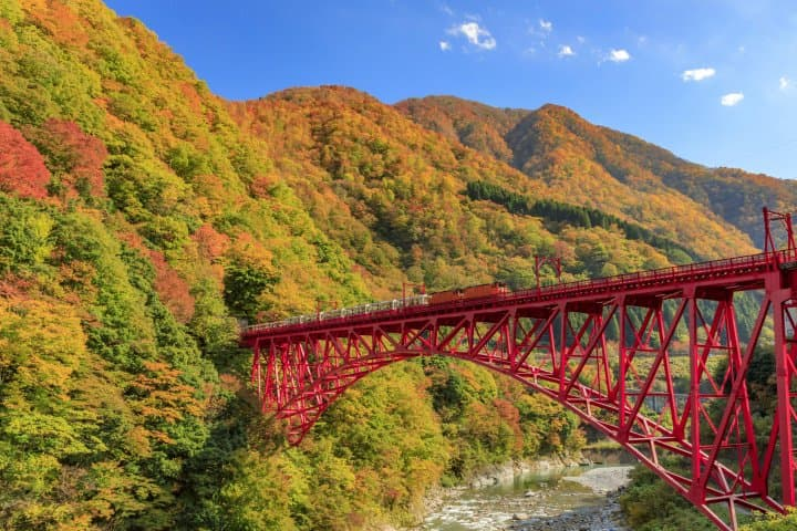 Local Beer, Seafood, and Great Views! Visit Kurobe and Uozu, Toyama