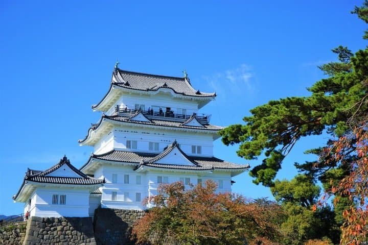 Traditional Crafts, History, and Hot Springs! A Trip to Odawara and Hakone