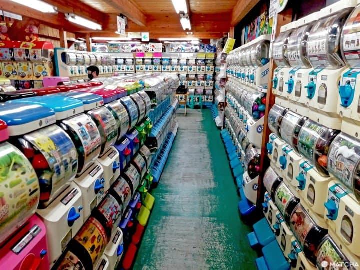 岡山文青的秘密景點「問屋町」 探訪史詩級的扭蛋店・二手書店