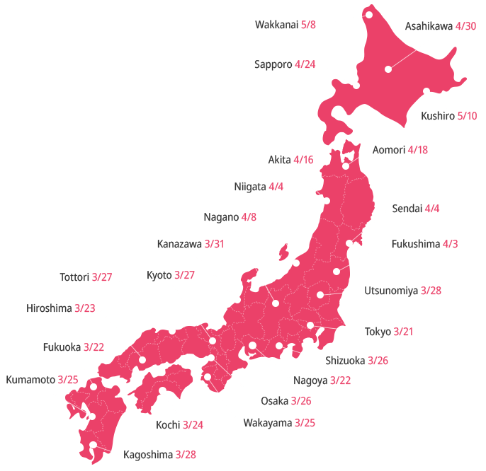 Japan 2020 Cherry Blossom Forecast